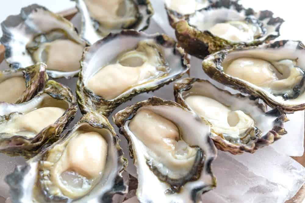 A bunch of fresh Sydney Rock Oysters.