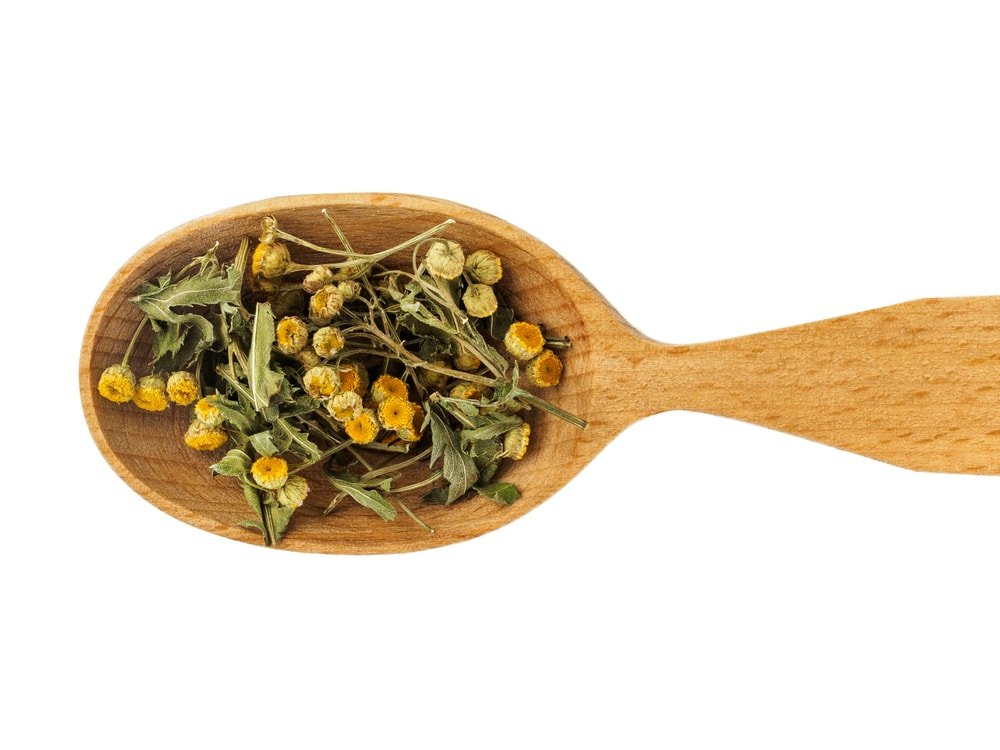 Dried Tansy (Tanacetum vulgare)