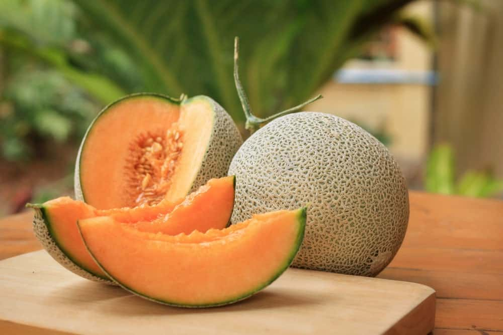 8 Different Types Of Cantaloupes You Can Enjoy True cantaloupe is a european melon named for a castle in italy american cantaloupe, when ripe, has a netted rind on a yellow or cream background. 8 different types of cantaloupes you
