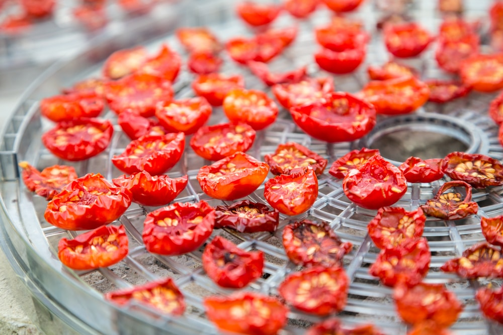 Sun-dried cherry tomatoes on a dehydrator tray.