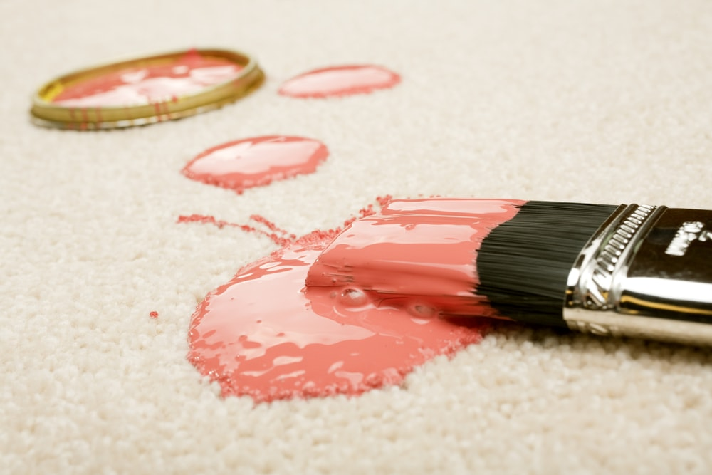 Pink paint staining the cream-colored carpet with a brush.
