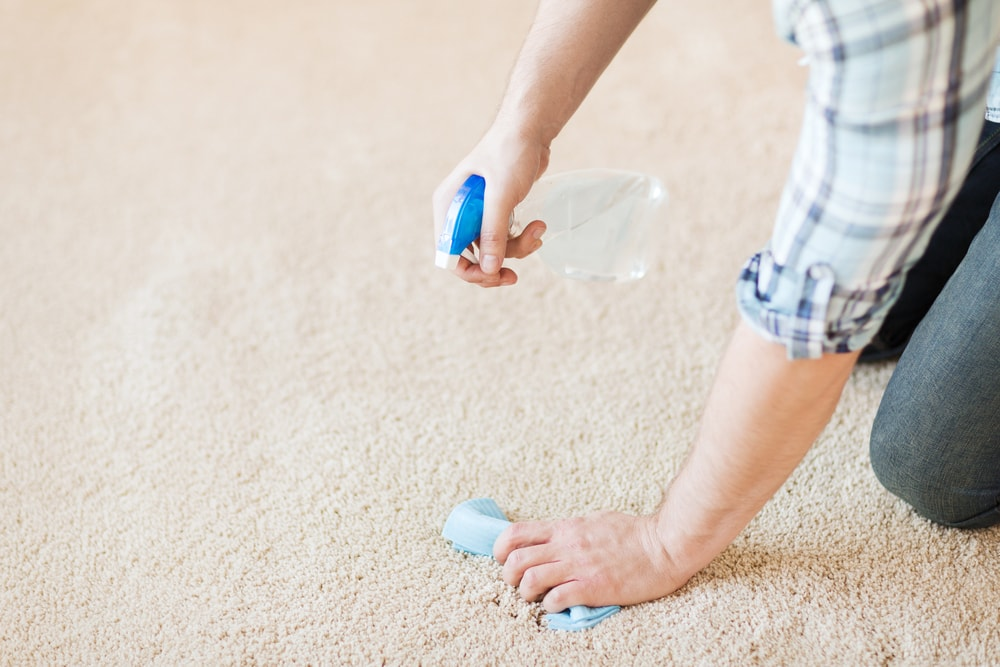 A man cleaning the beige carpet with a spritzer and a rag.