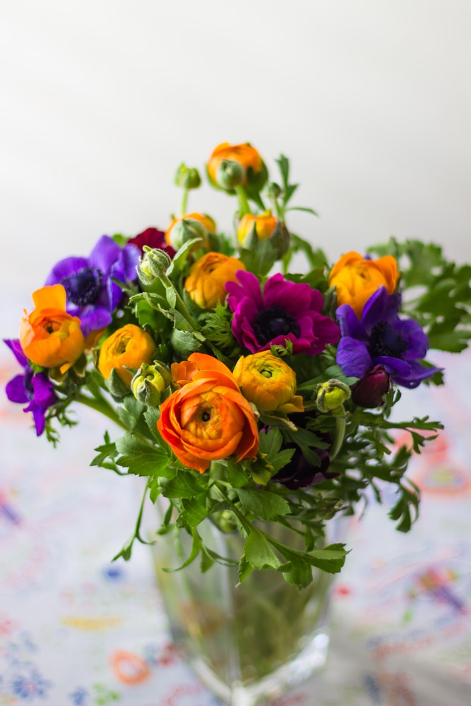 A bouquet of colorful anemones and buttercups in a vase.