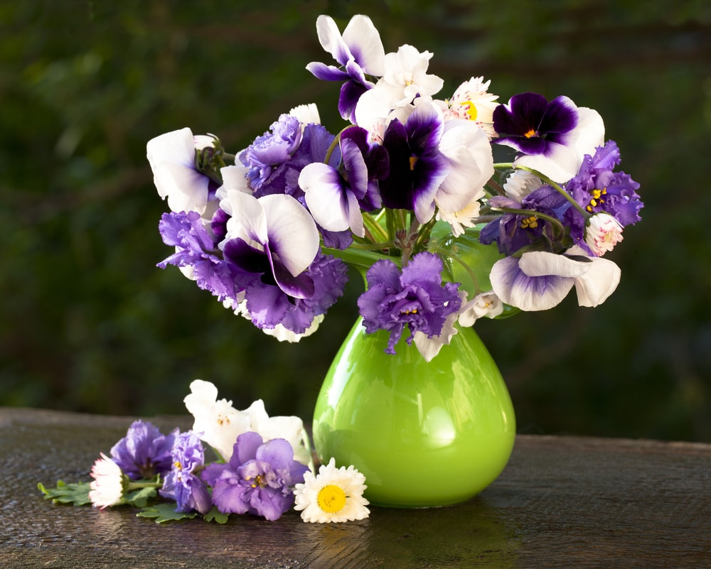 A bunch of purple and white pansies placed in a green vase.