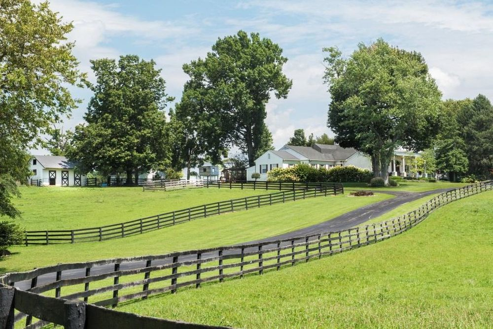 This lovely horse farm has wooden fences lining the lush green lawns of grass that has a lovely driveway in the middle leading to the beautiful house surrounded by tall trees. Images courtesy of Toptenrealestatedeals.com.