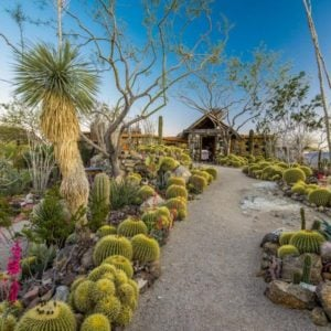 The main house of the ranch is wonderfully foregrounded with a lovely walkway flanked by a lush landscaping field with cacti, succulents and trees that go perfectly well with the desert scenery. Images courtesy of Toptenrealestatedeals.com.