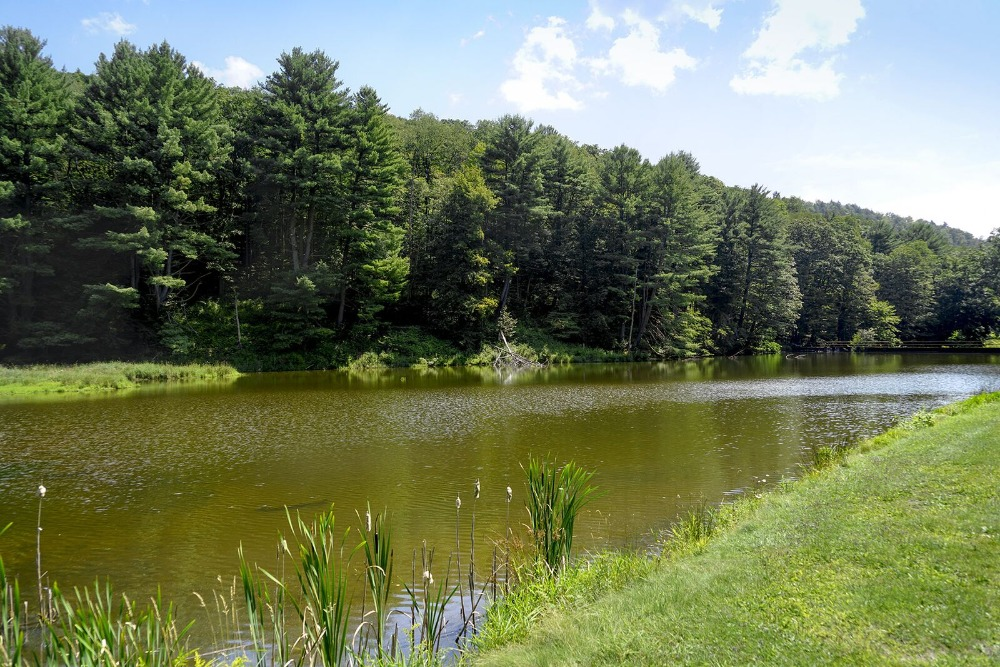 Here's the river inside the property, surrounded by the lawns and the tall trees. Images courtesy of Toptenrealestatedeals.com.