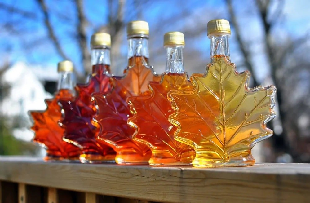 5 Different Types of Maple Syrup