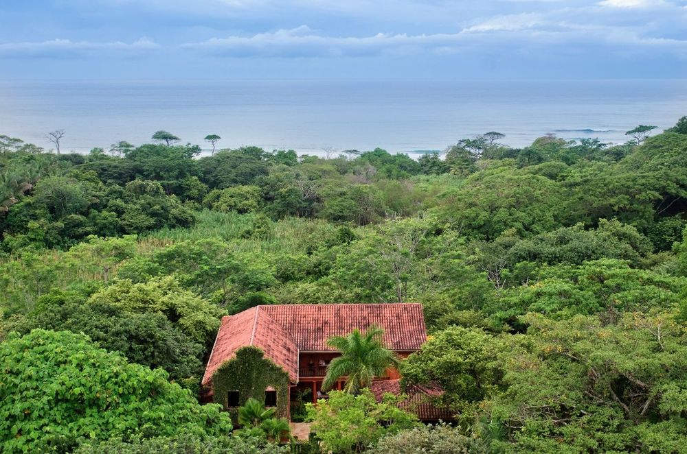 This aerial view of the house showcases the earthy red tone of the house that makes it stand out against the lush surrounding trees. Images courtesy of Toptenrealestatedeals.com.