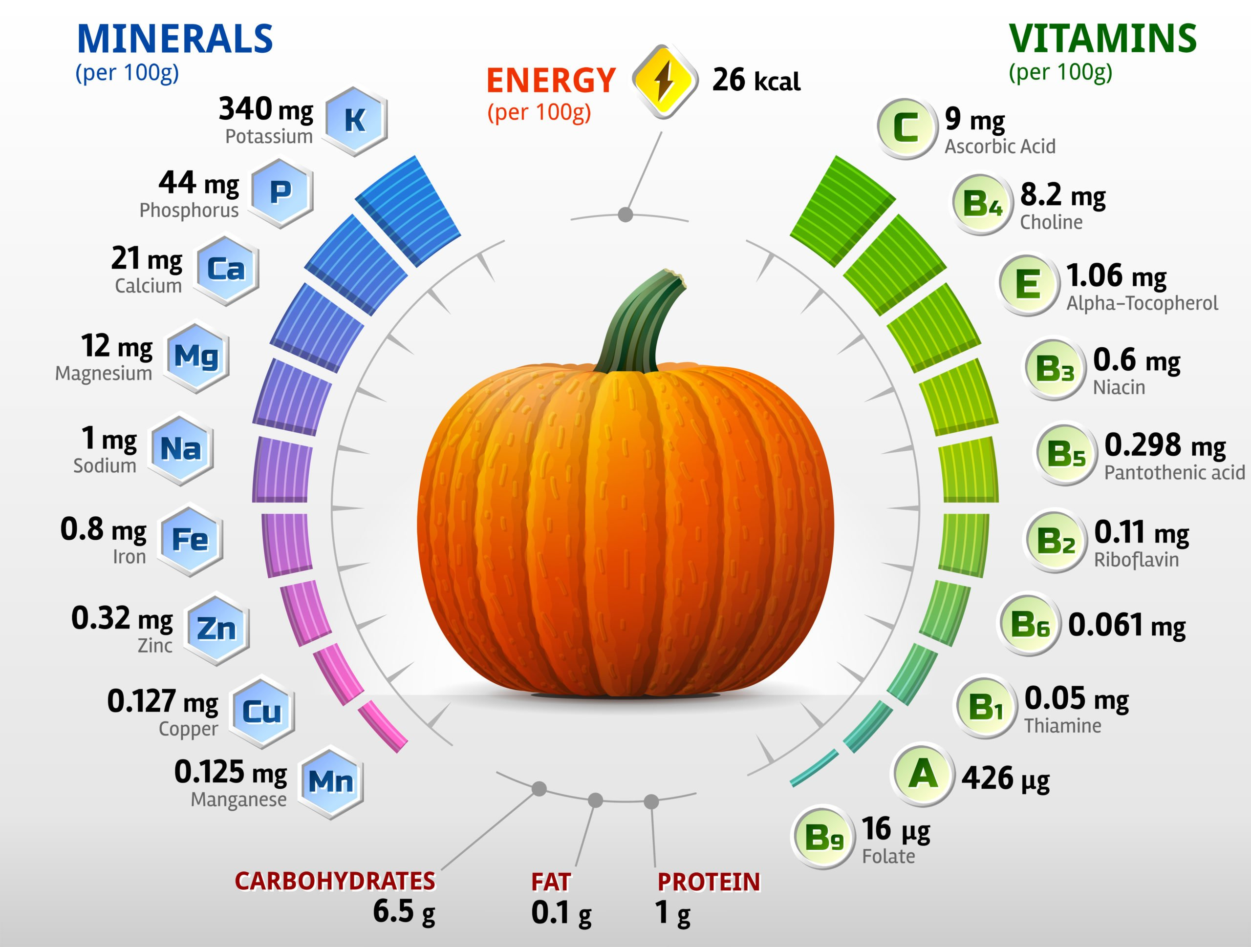 Pumpkin nutrition facts chart