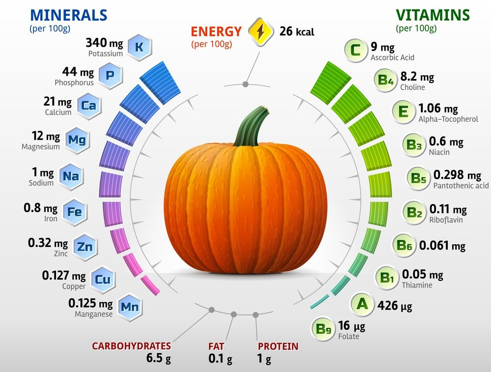 Pumpkin Nutritional Chart