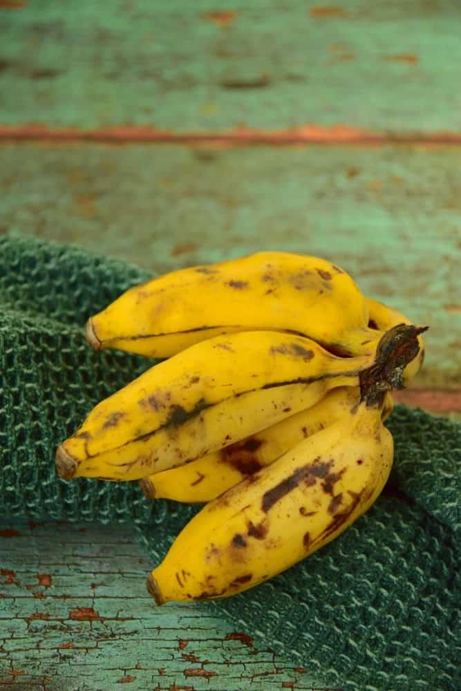 A few pieces of pisang raja bananas.
