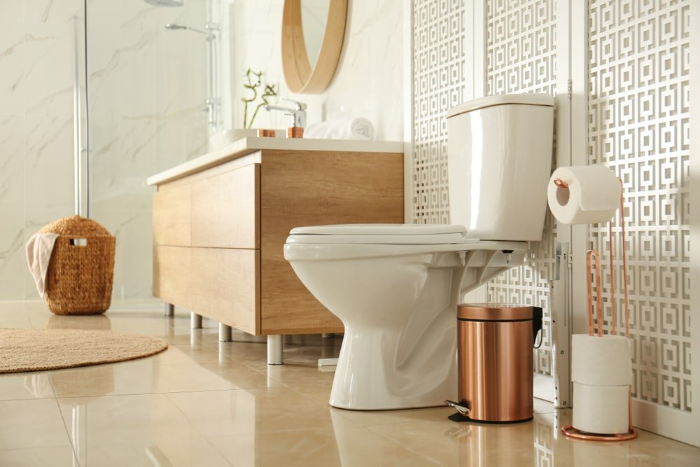 Side profile of a toilet near a wooden screen in a modern bathroom.
