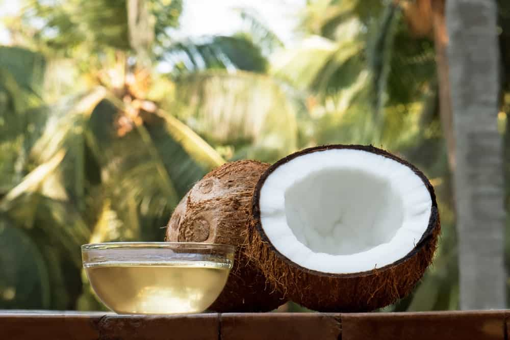 A bowl of virgin coconut oil with raw coconuts and trees in the background.