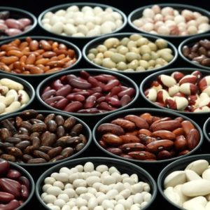 The various types of beans and legumes in separate dishes.