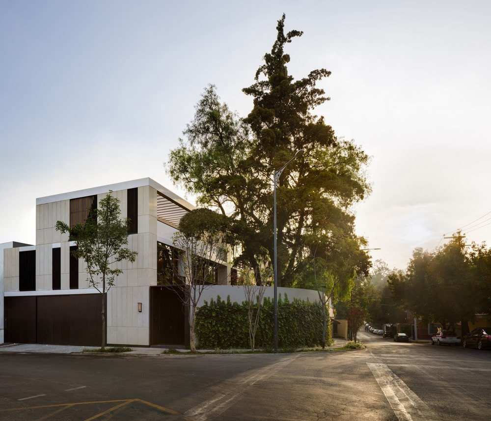 This is a street view of the house featuring its modern and bright exterior walls adorned with a large pine tree on the side.