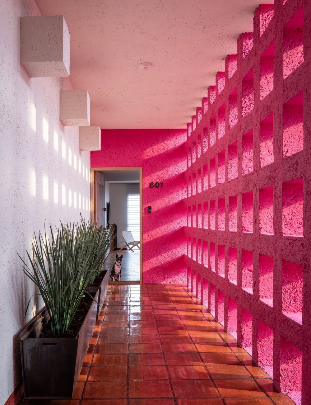 This is the hallway leading to the main door adorned with planters on one side and a bubble gum pink wall.