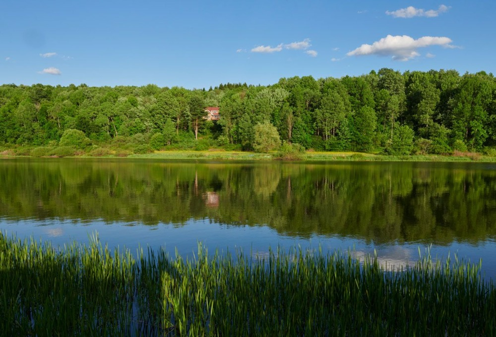 Here's the lake near the house. Image courtesy of Toptenrealestatedeals.com.