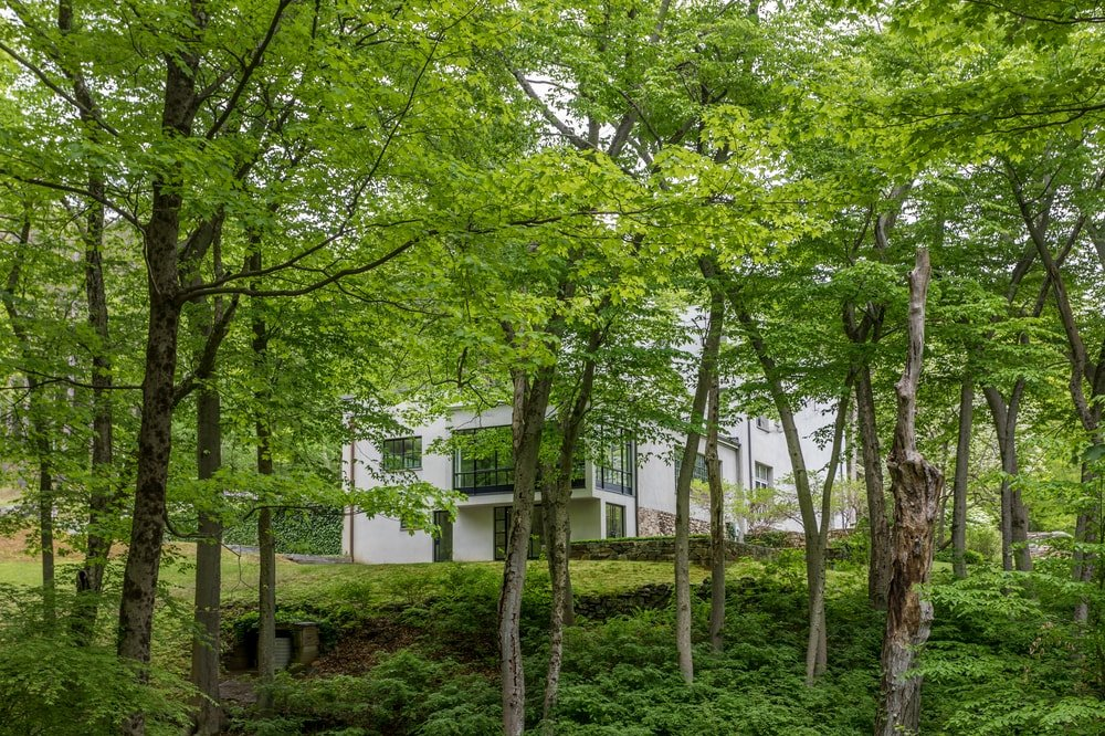 This is a look at the house through the blanket and veil of the tall trees surrounding the house. Image courtesy of Toptenrealestatedeals.com.