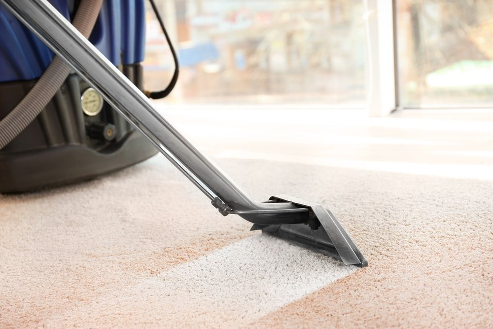 A close look at a carpet being cleaned with a steamer.