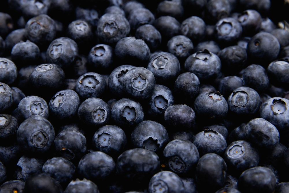 A close look at a bunch of fresh blueberries.