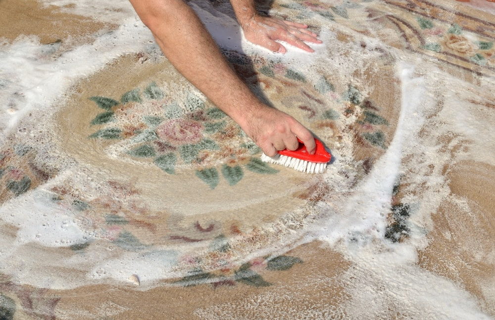 A person scrubbing the carpet with a brush.