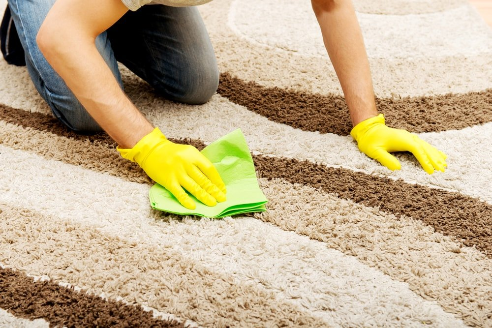 A woman cleaning the carpet with a cloth.