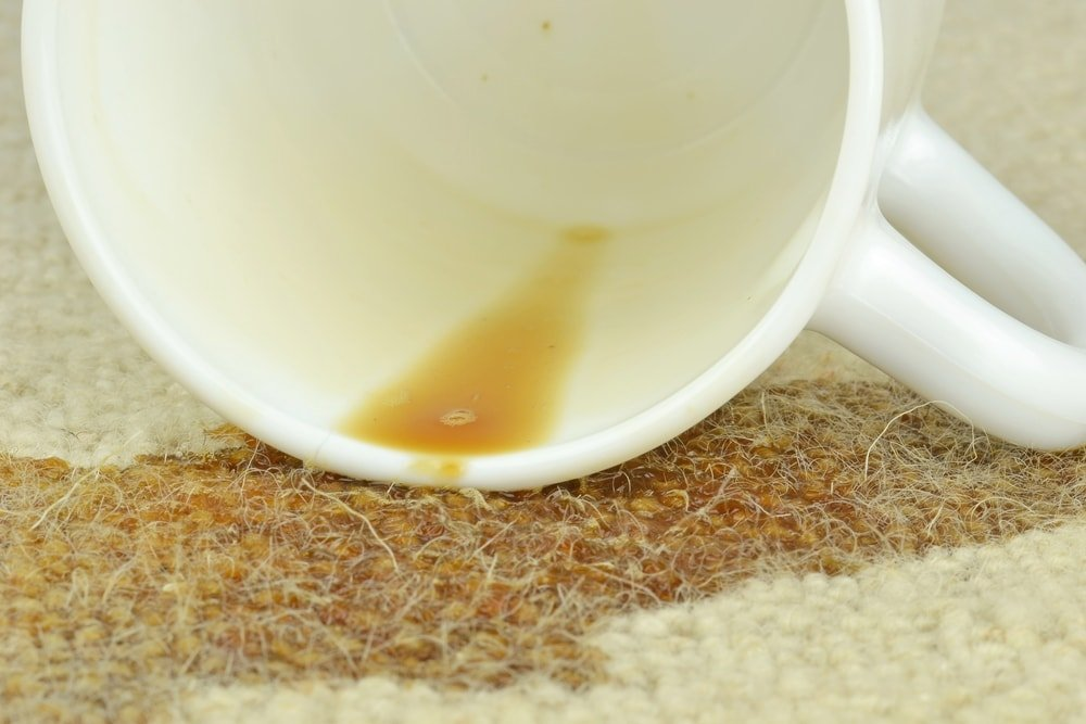A close look at a coffee mug that spilled onto the carpet.