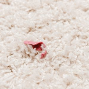 A close look at gum stuck on a beige carpet.