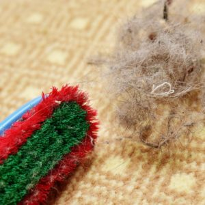 A large hairball next to a brush on a carpet.