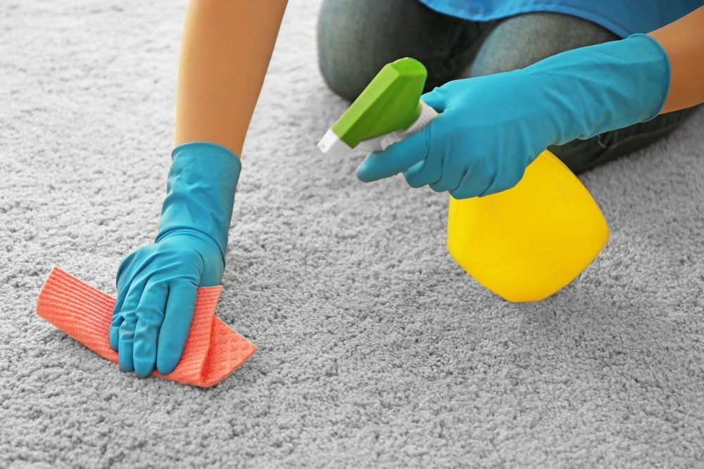 Gloved hands cleaning the carpet with a rag and a spritzer.