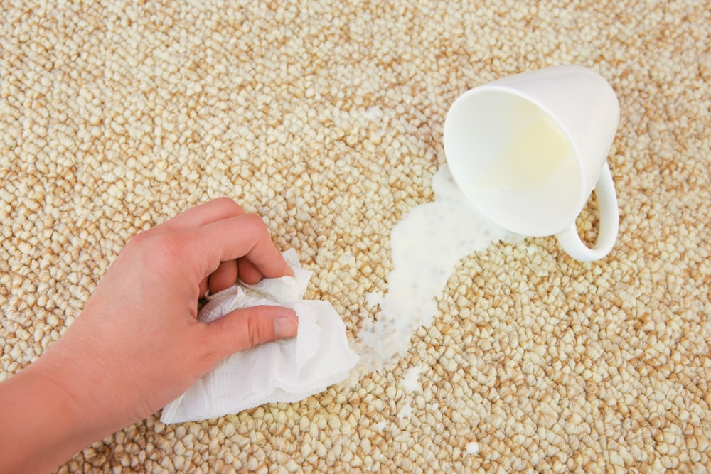 A hand cleaning the spilled milk on the carpet with a tissue.