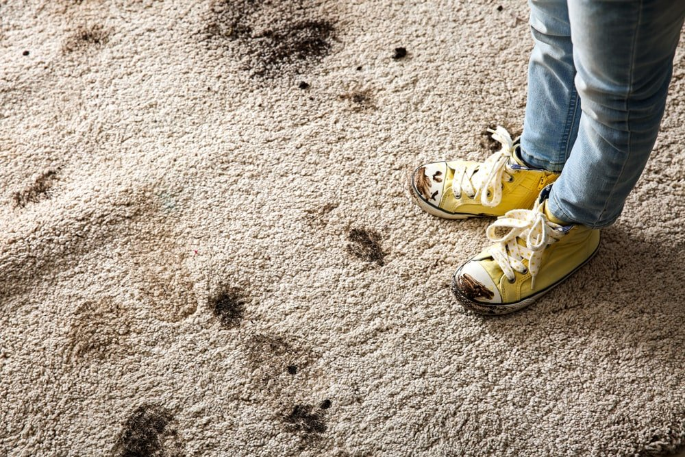 A close look at someone with muddy shoes on a muddy carpet.