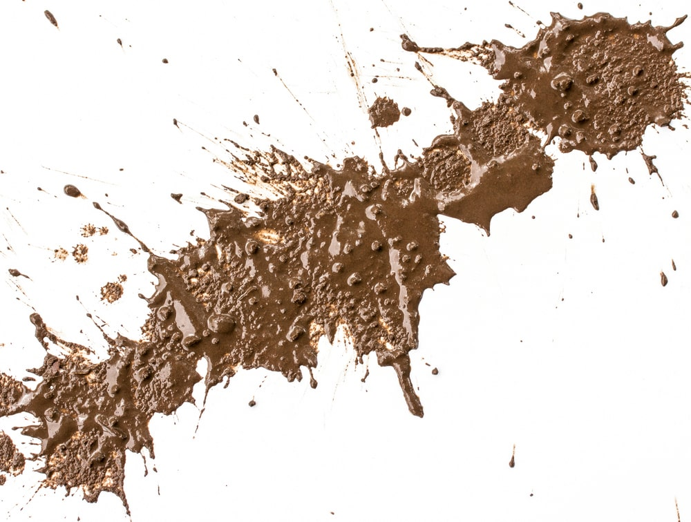 A splash of wet mud on a white surface.