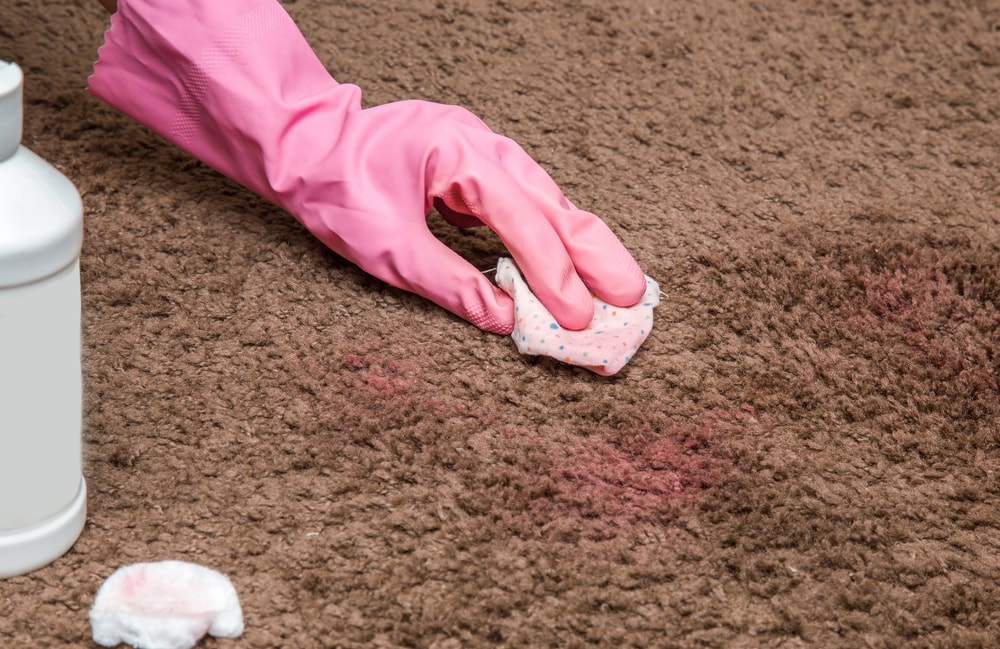 A gloved hand cleaning the nail polish off the brown carpet.