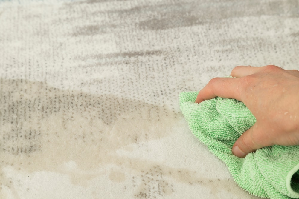 A hand wiping the wet carpet with a towel.