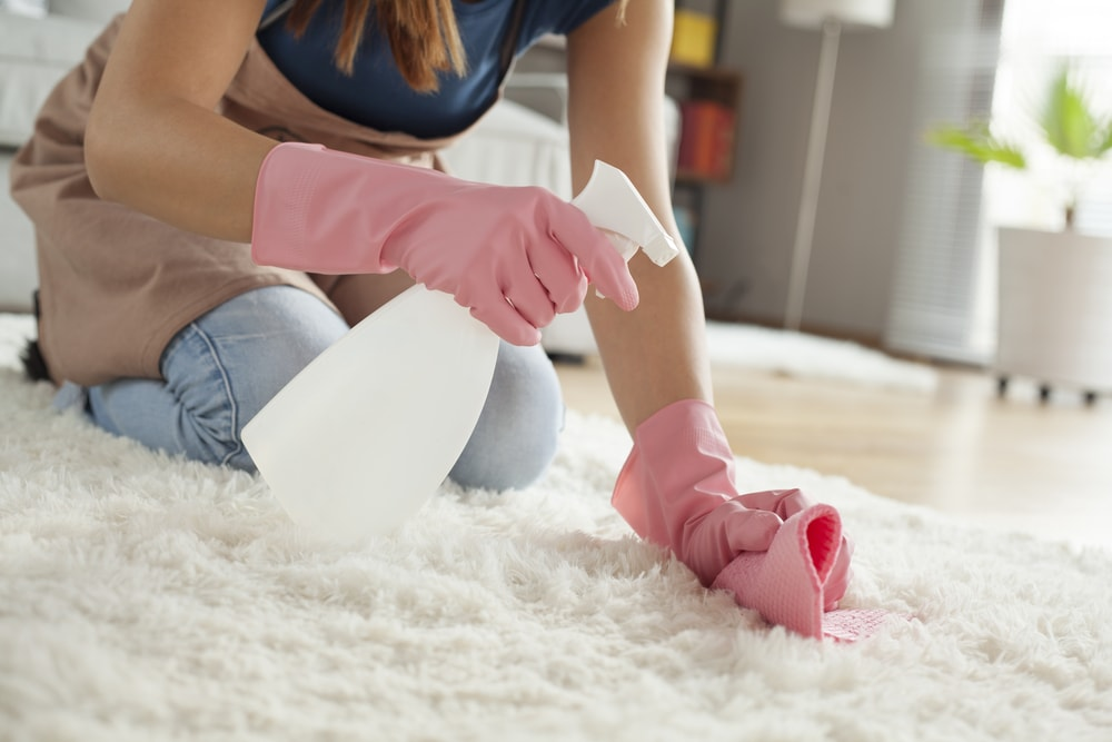 A woman cleaning the white carpet with a rag and a spritzer.