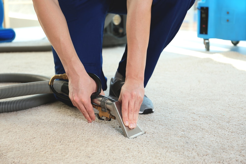 A man cleaning the carpet with a high grade equipment.