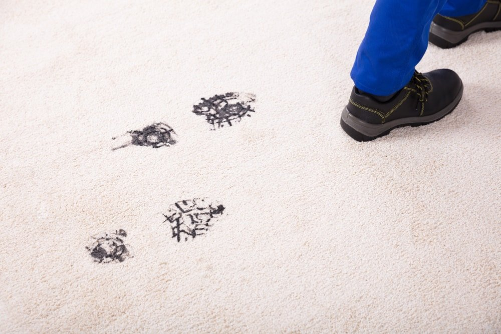 A person leaving dirty shoe prints on the carpet.