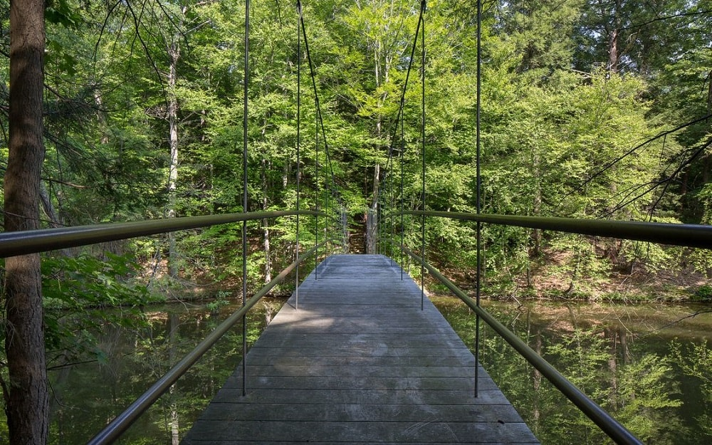 The property also has its own suspension bridge with a wide walkway and a perfect view of the tall trees beyond. Image courtesy of Toptenrealestatedeals.com.