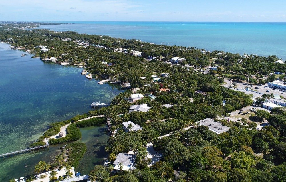 Bird's eye view of the neighborhood, with properties featuring their own docks. Image courtesy of Toptenrealestatedeals.com.