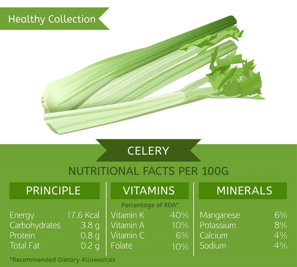 A celery nutrition facts chart.