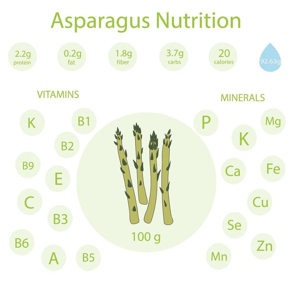 Asparagus Nutrition Facts Chart