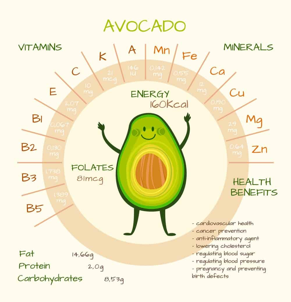 Avocados Nutrition Facts Chart