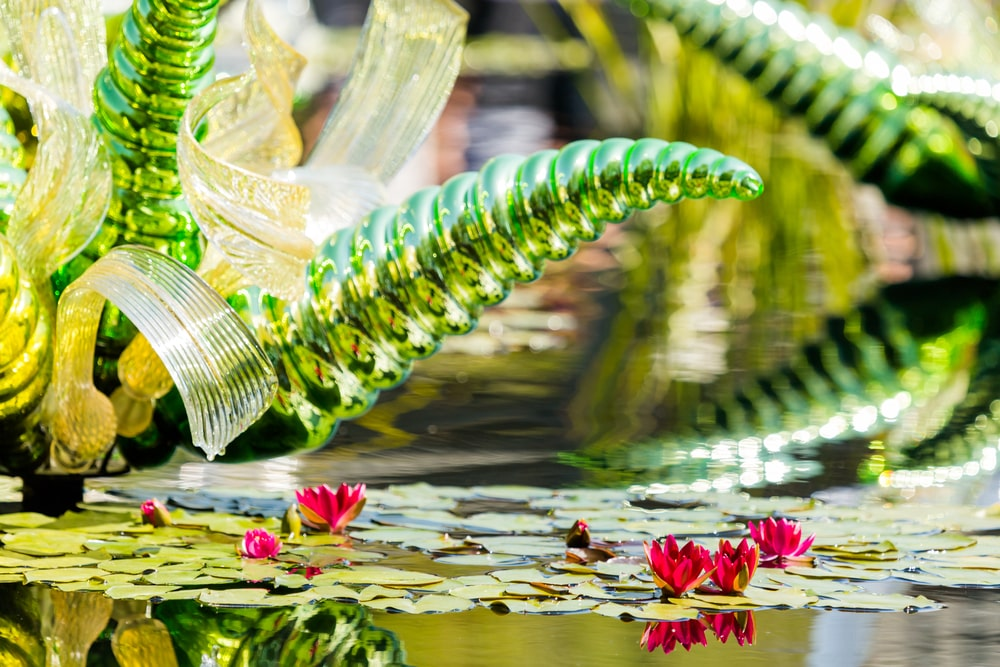 A close inspections of the blown glass flowering plant with opulent arms.