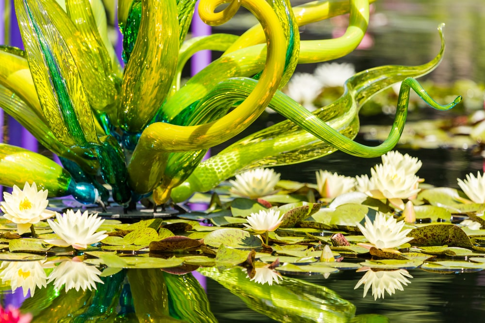 A lush water flower blown glass display.