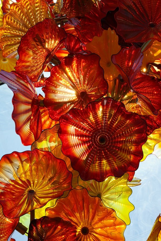 Close-up of glass flowers in the sunlit conservatory at Chihuly Garden and Glass Museum, Seattle, Washington.