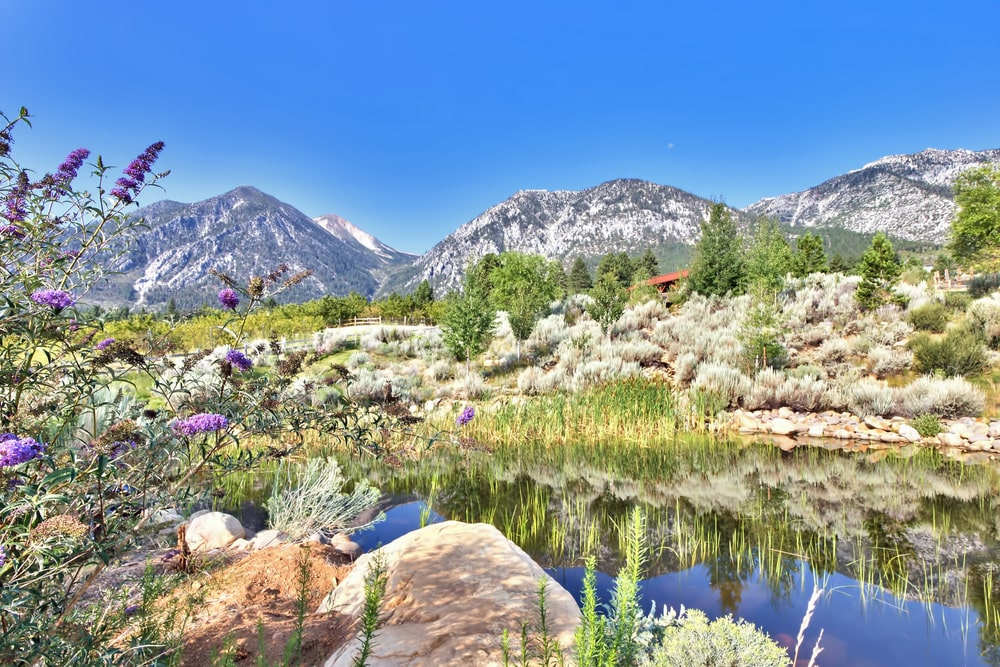 This is a look at the scenic landscape of the ranch with a pond surrounded by rocks, shrubs and a view of the mountains. Image courtesy of Toptenrealestatedeals.com.