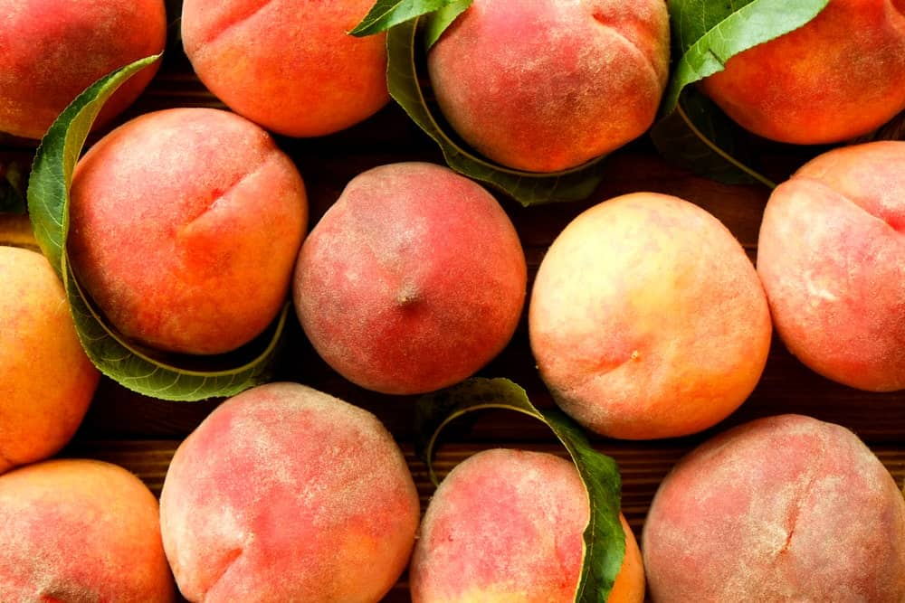 Clingstone varietal peaches