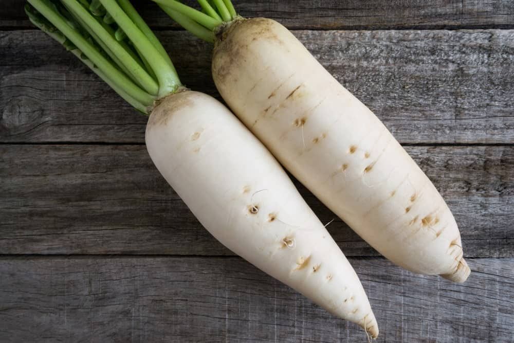 Daikon Long White radishes on a rustic table.